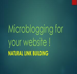 Η τακτική Microblogging στις SEO τακτικές είναι πλέον απαραίτητη για όλες σχεδόν τις ιστοσελίδες !